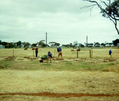 Planting Trees - 1986
