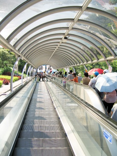 Escalators at Hong Kong Ocean Park