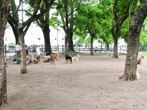 Doggy Day Care - Plaza San Martin, Buenos Aires