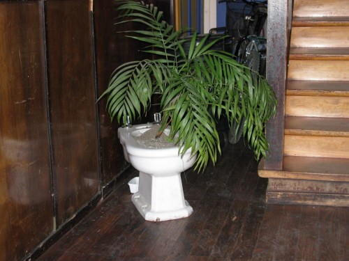 Casa Margouya - interesting use for a bidet