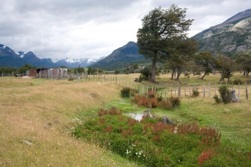 Cruise to Parque Nacional Bernado O?Higgins - Puerto Natales, Chile