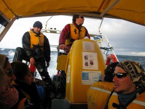 Zodiac ride to Magdalena Island, near Punta Arenas, Chile