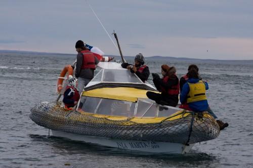 Zodiac off Marta Island, near Punta Arenas, Chile