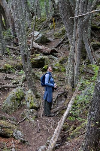 Tierra del Fuego National Park - Ushuaia, Argentina
