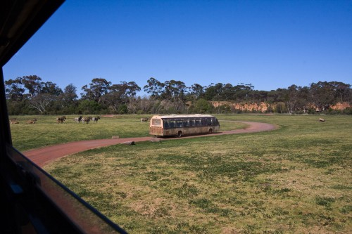 Werribee Open Range Zoo