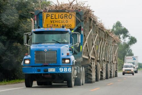Sugar cane road train