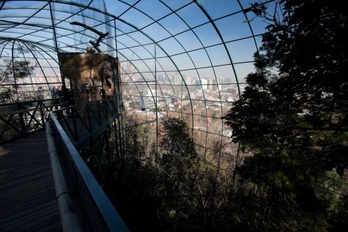Walk-through aviary at Santiago Zoo