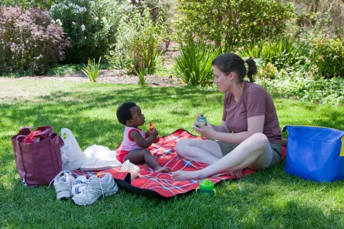 Picnic lunch in Wagga Wagga botanic gardens